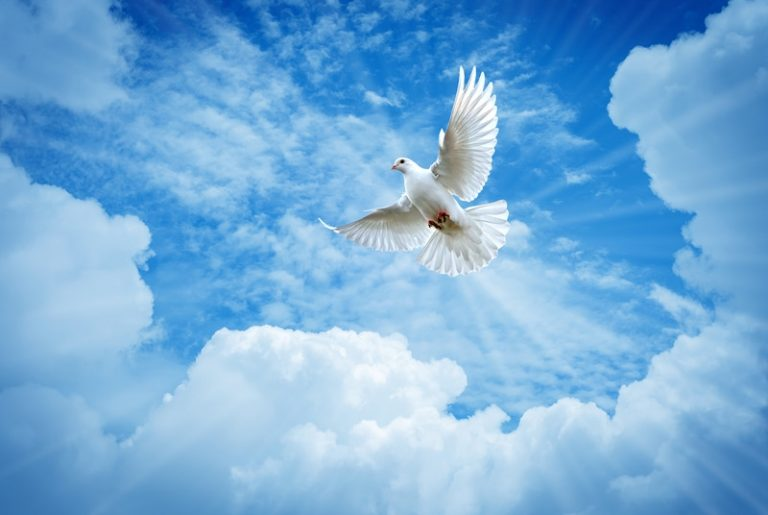3 Signs Your Living With The Holy Spirit